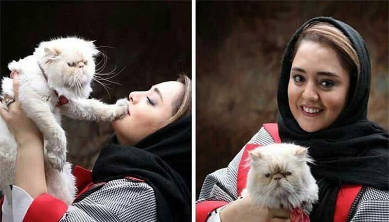 نرگس محمدی و گربه خانگی اش! + عکس