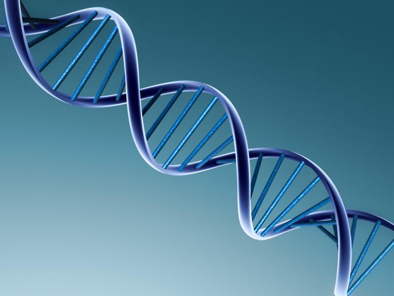 شناسایی ۸۲ ژن جدید مؤثر در بیماری کمتوانی ذهنی ارثی اپیژنوم