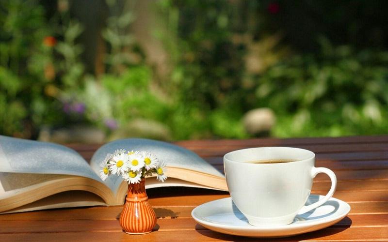 اگر قدرت، ثروت و رفاه می خواهید، بخوانید