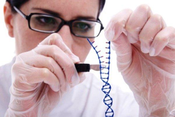 اصلاح ژنتیکی سرطان خون را بایگانی می کند