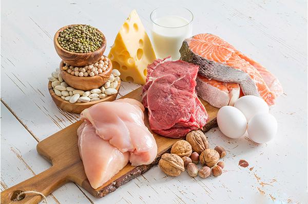 چرا پروتئین تا این حد برای هر بدنساز حیاتی است؟
