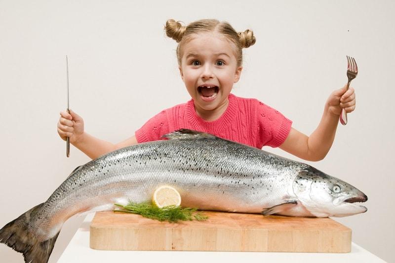 همه خواص ماهی