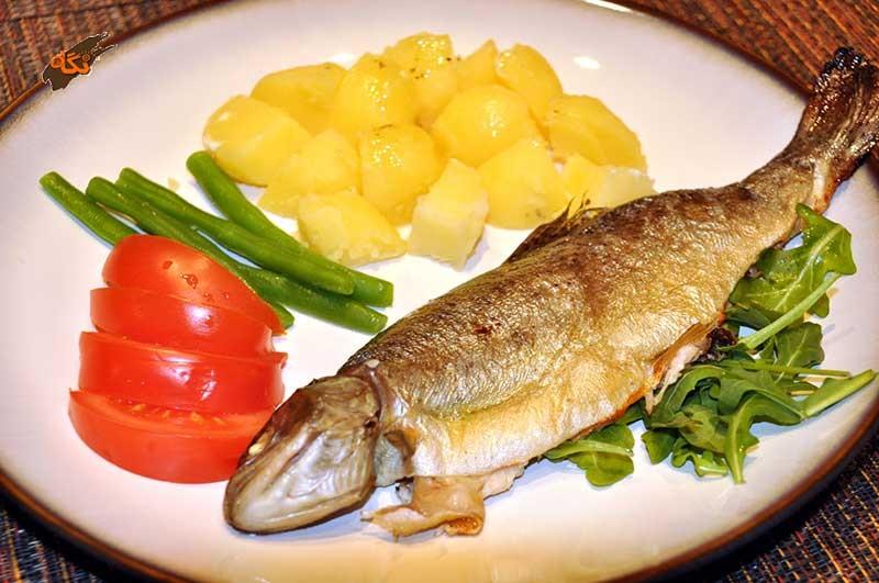 بهترین ماهی برای خوردن