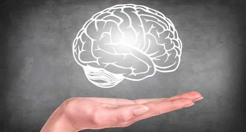 سلامت روانی با این موادمغذی | اینفوگرافیک