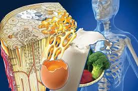 برای تقویت استخوانها این غذاها را بخورید | اینفوگرافیک