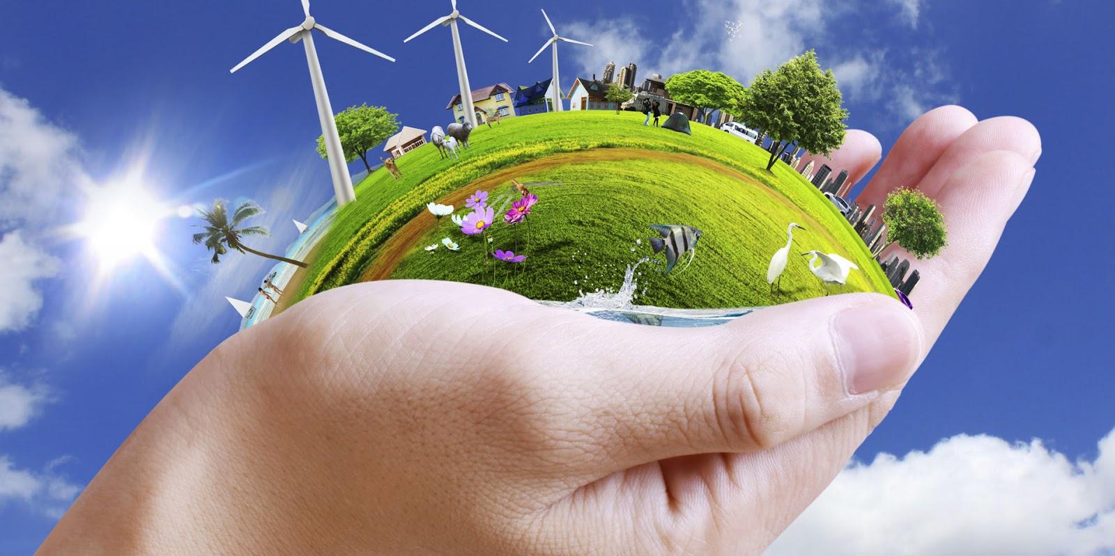 باید با مسائل زیست محیطی جدی تر برخورد کنیم