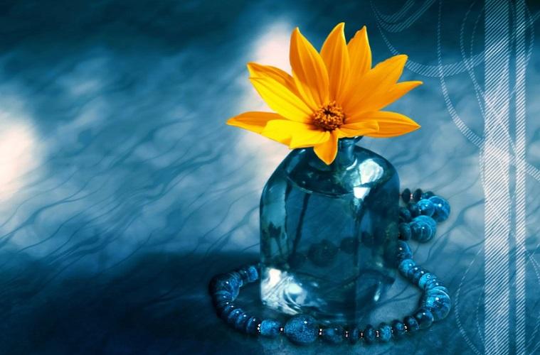 مراقب باشید روحتان خاکی نشود