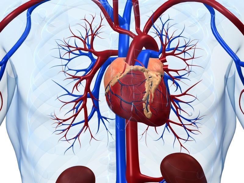 پیشگیری از لخته و سکته مغزی با پمپ قلب مغناطیسی
