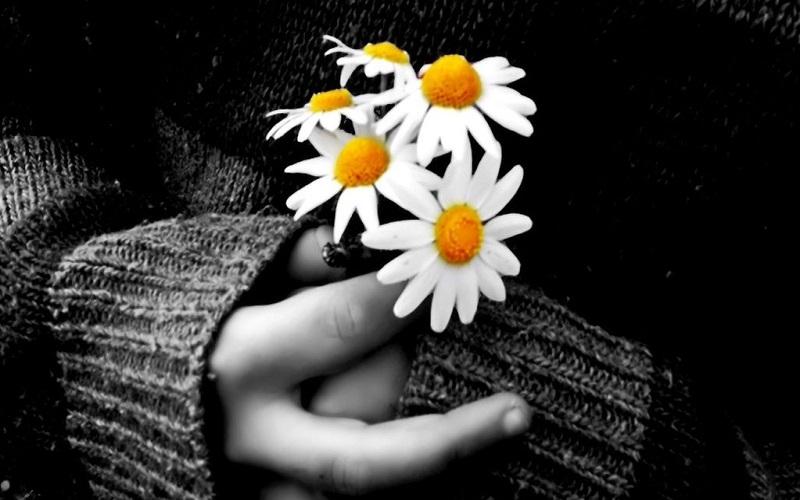 دستی که گل اهدا می کند،٬ خودش هم بوی گل می گیرد
