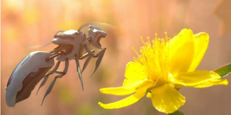 ساخت زنبور رباتیک برای انجام کار گردهافشانی