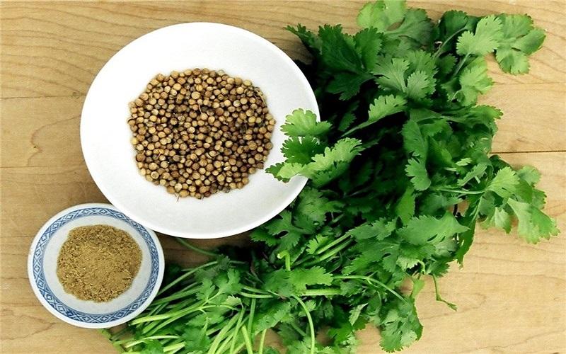 گیاهی خارق العاده برای کاهش قند خون و ضد دیابت