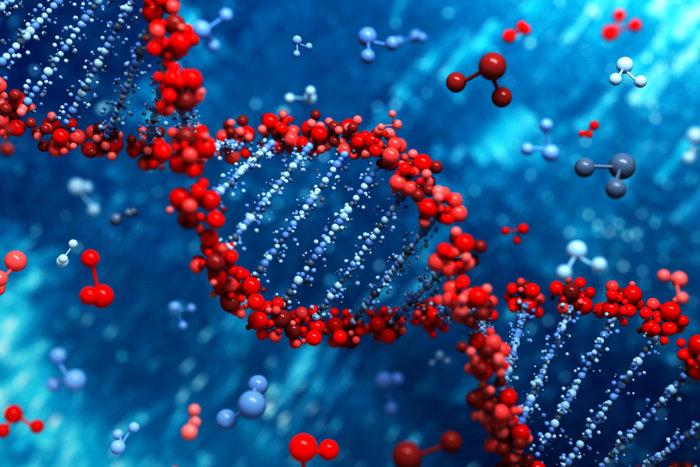 کشف ژنی که در سرطان ارثی سینه دخیل است