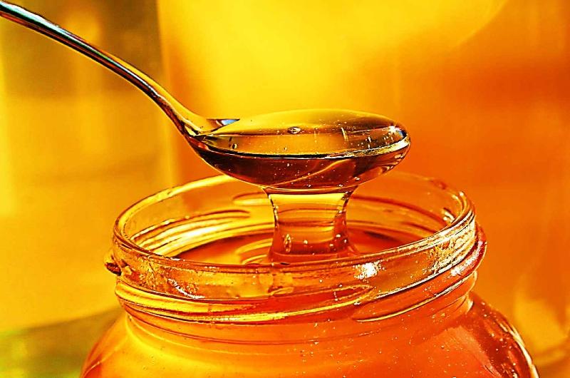 نکات کاربردی برای مراقبت از عسل در برابر مورچه ها