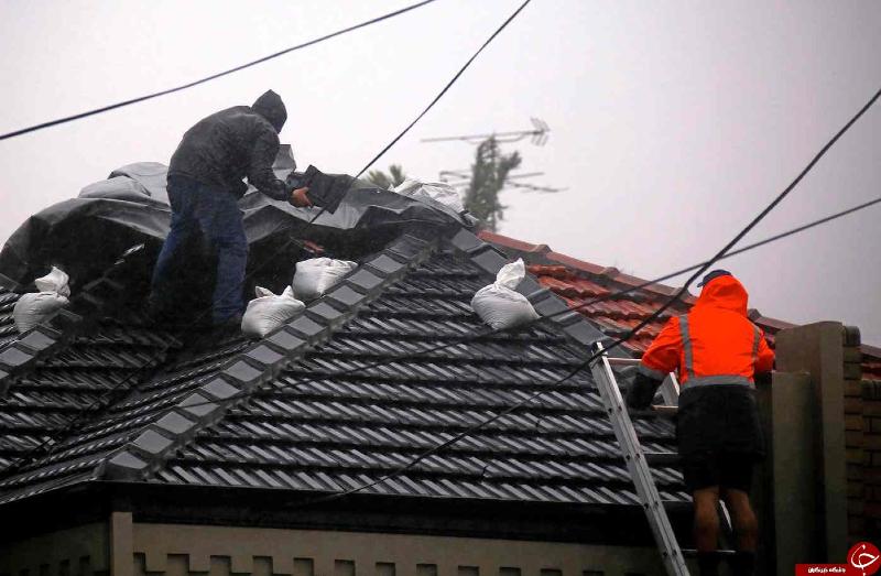 طوفانِ استرالیا هزاران خانه را در خاموشی فرو برد