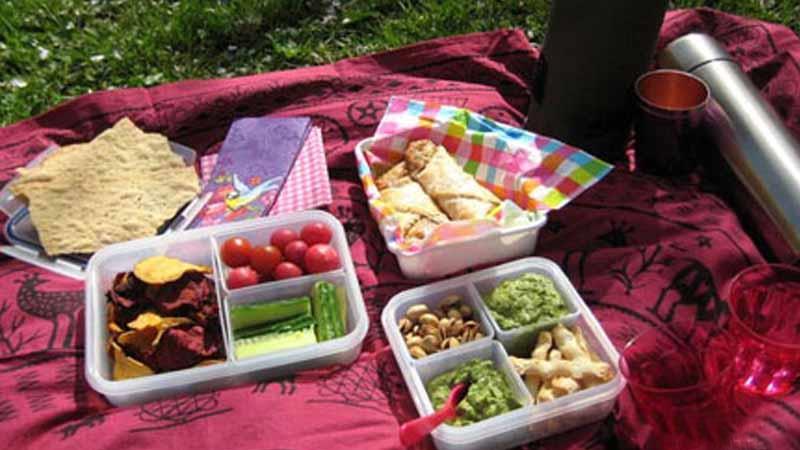 آداب غذا خوردن در سفر از نگاه طب سنتی