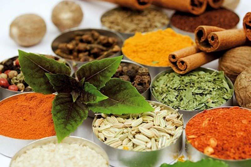 چگونه چربی خون را با گیاهان دارویی کنترل کنیم؟
