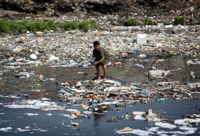 هشدار جدید سازمان ملل نسبت به کاهش تنوع زیستی در جهان