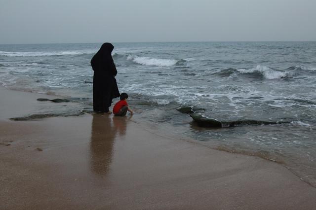 برنامههای سازمان محیط زیست ویژه استانهای ساحلی برای مدیریت پسماند
