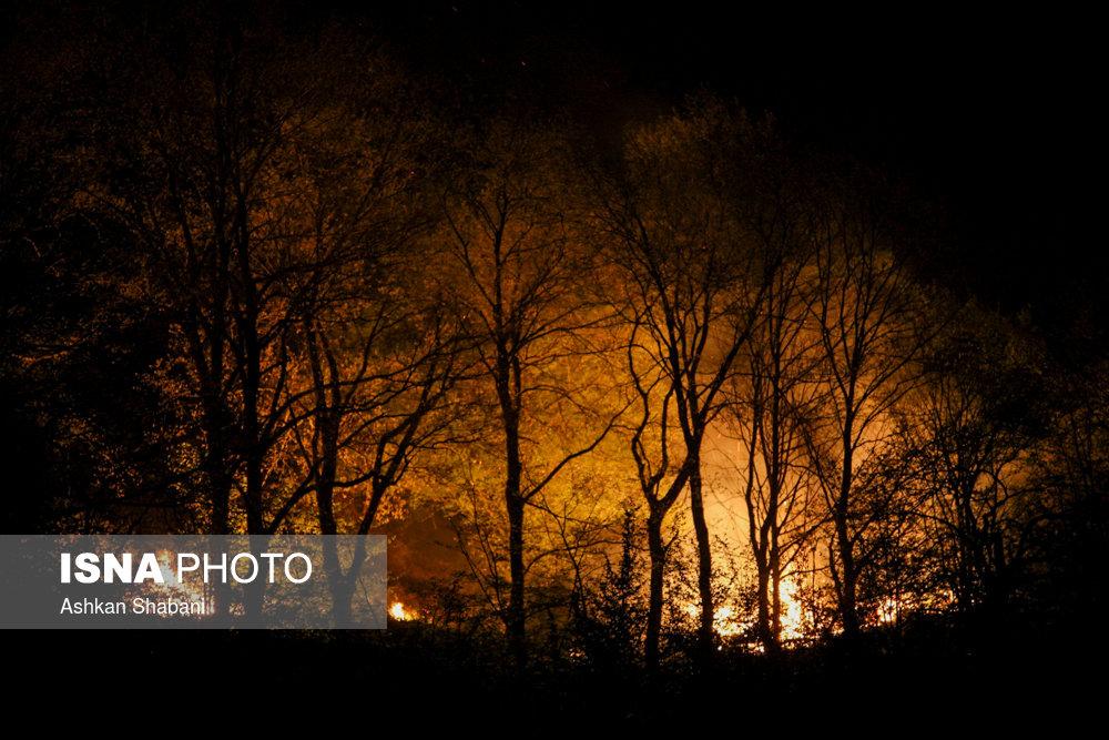 هیچ آتشی در مناطق حفاظت شده گیلان گزارش نشده است