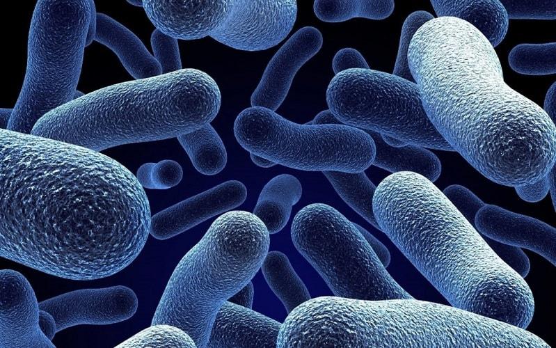 ابداع تراشهای برای پیدا کردن باکتری خطرناک «لژیونلا»