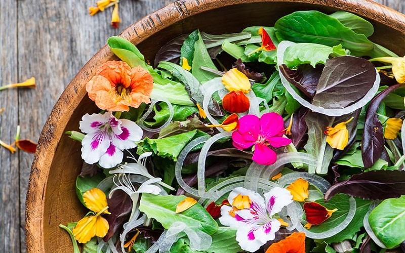 بایدها و نبایدهای خورد و خوراک بهاری