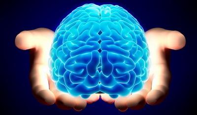 مغز افراد دو زبانه بسیار قوی تر از افراد تک زبانه است