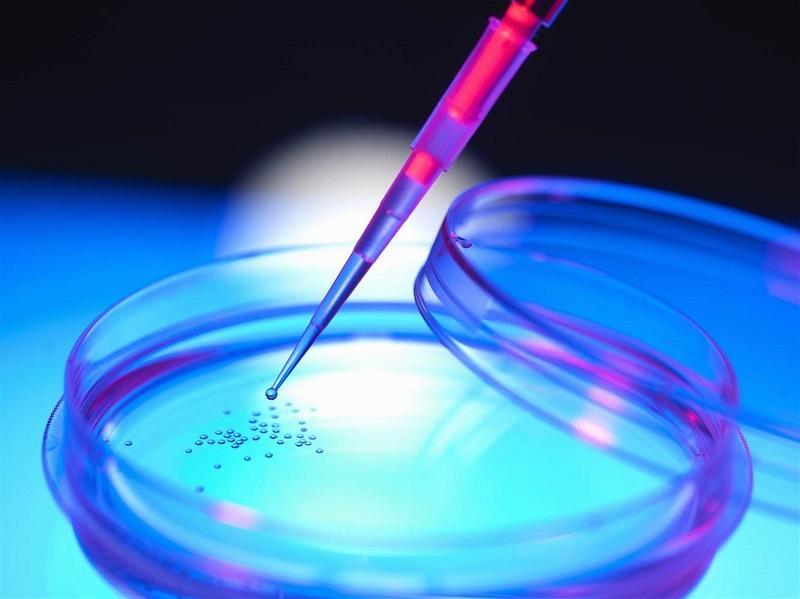 تولید سلول بنیادی مزانشیمی برای درمان آرتروز