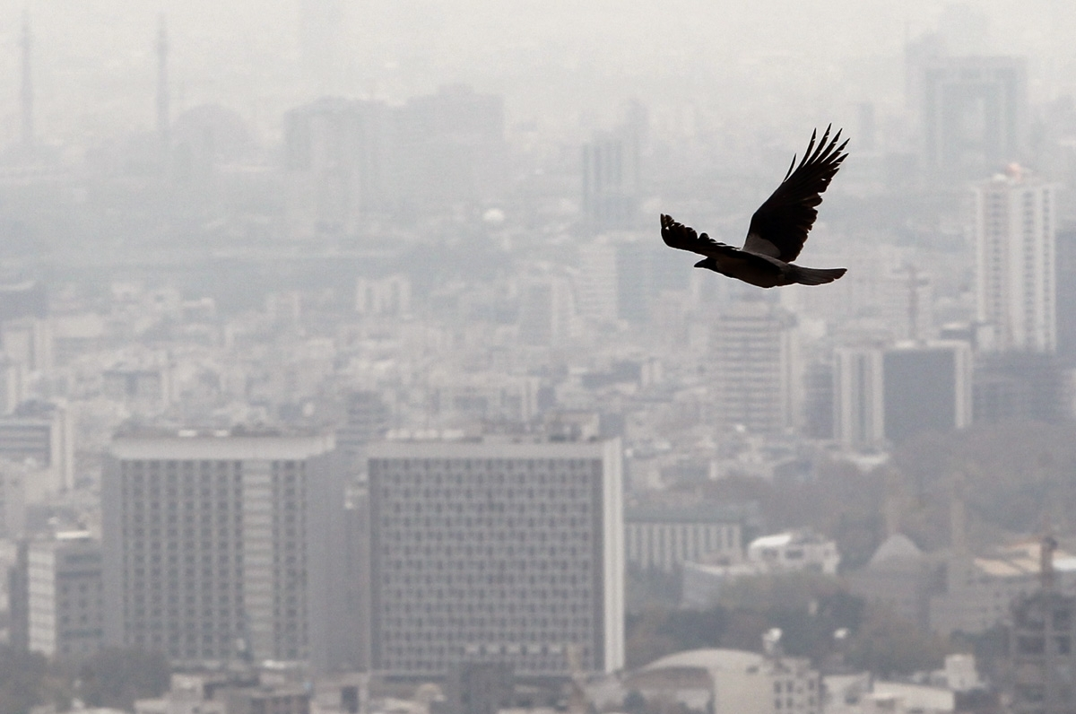 آلودگی هوا؛ چهارمین عامل خطر در دنیا