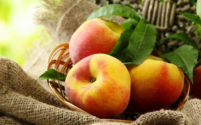 مکمل های خوراکی مهم برای کنترل اشتها و پرخوری
