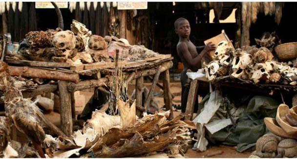 ترسناکترین بازار جهان + عکس