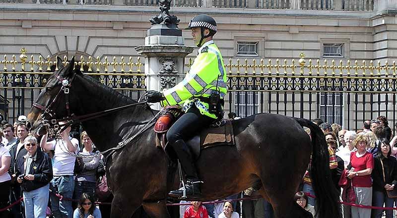 چرا پلیس برخی کشورها هنوز سوار اسب می شوند؟ + عکس