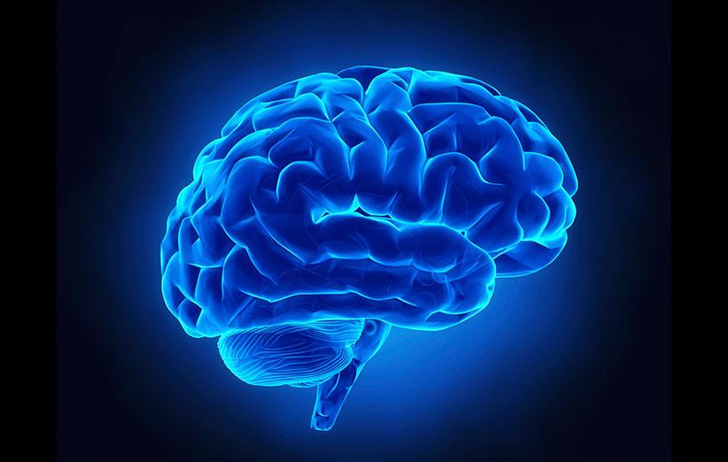 ترمیم آسیب مغزی با سلول های بنیادی