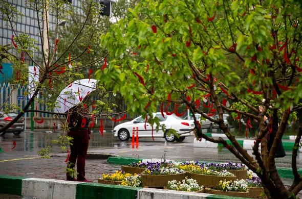 بارش باران در ۱۵ استان طی هفته آینده
