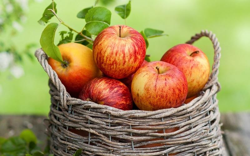 میوه ای که با چربی خون می جنگد