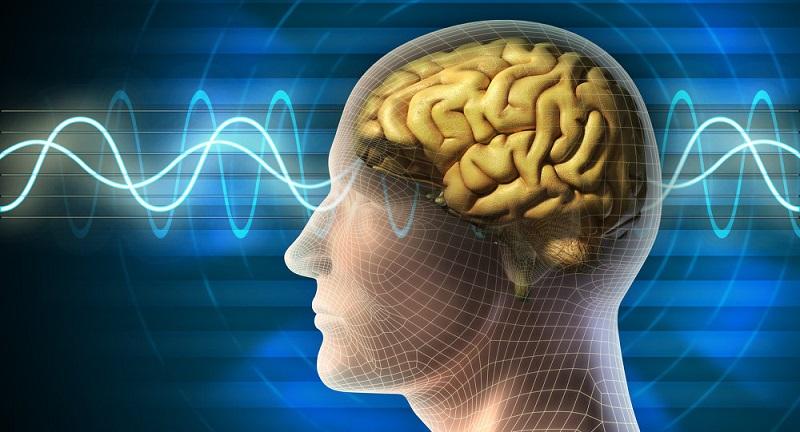 ثبت فعالیت های عمیق مغزی با بالاترین دقت ممکن به کمک پلیمر