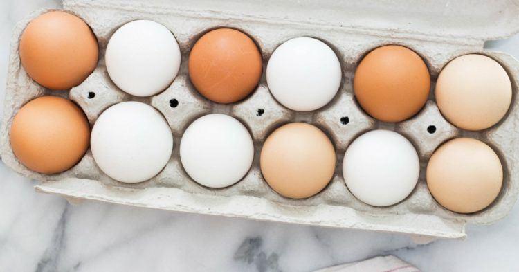 تشخیص سریع آلودگی تخممرغ به باکتری عفونتزا