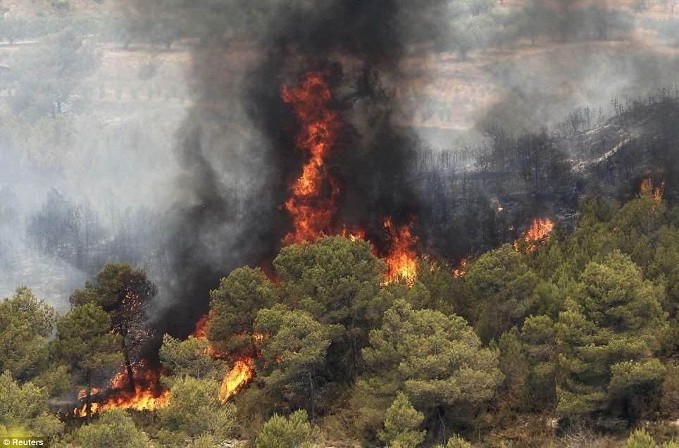 آتش بی سابقه در دل جنگل های شمال
