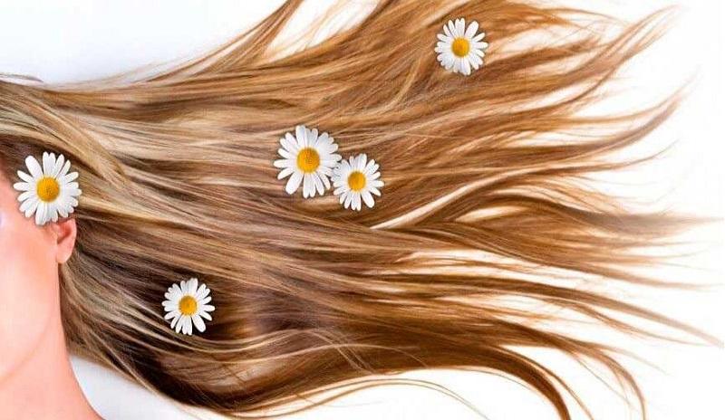 بهترین مواد طبیعی برای تقویت موها