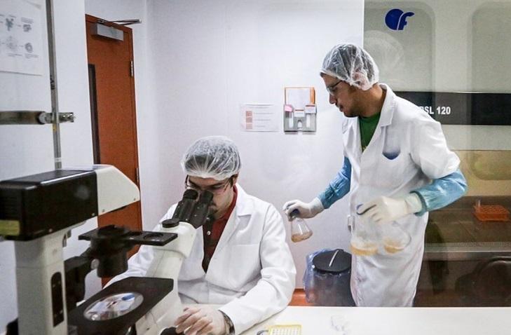 ارائه خدمات بیمه درمان تکمیلی به شرکتهای دانشبنیان