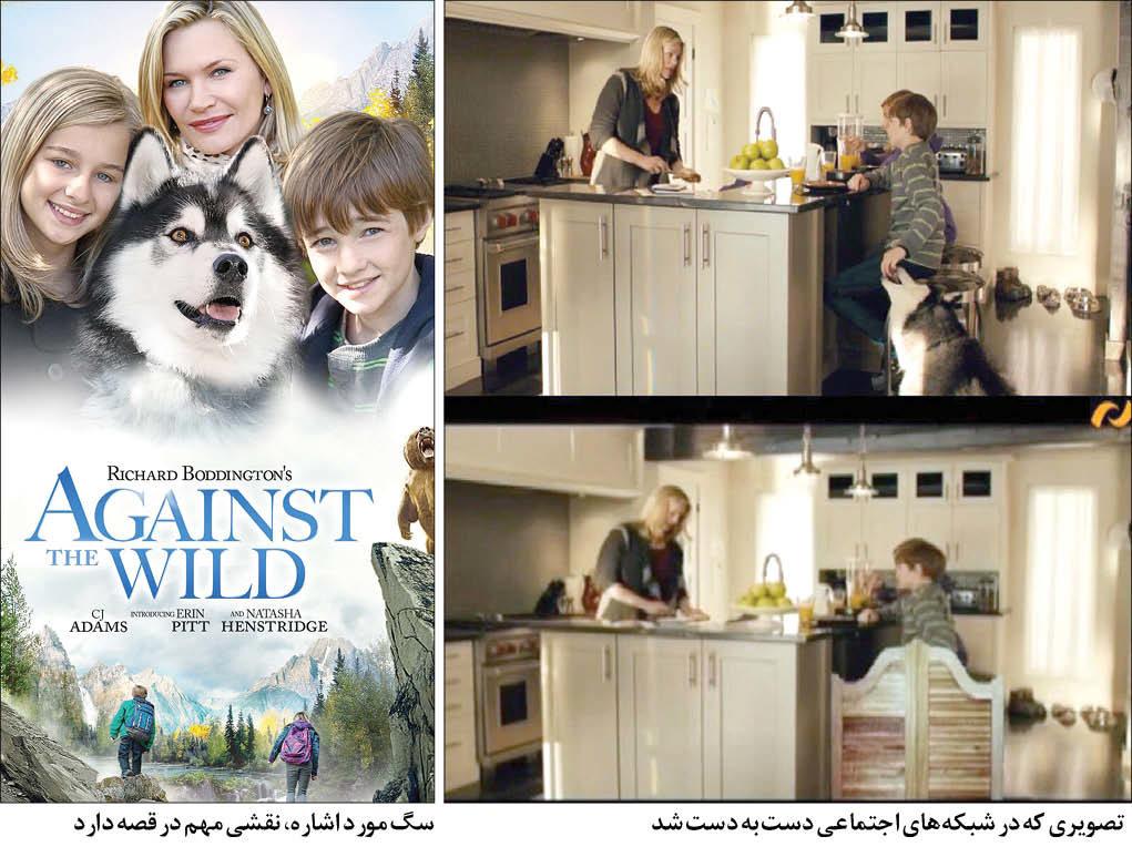 سانسور سگ کار دست تلویزیون داد + عکس