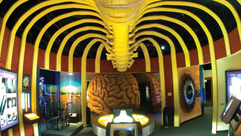 جذاب ترین موزه های پزشکی جهان را بشناسید