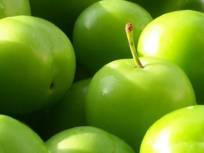 تاثیر عجیب گوجه سبز بر زیبایی جنین