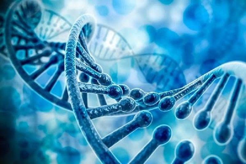 اختلال در ژنها شایع ترین بیماری عصر مدرن را رقم می زند
