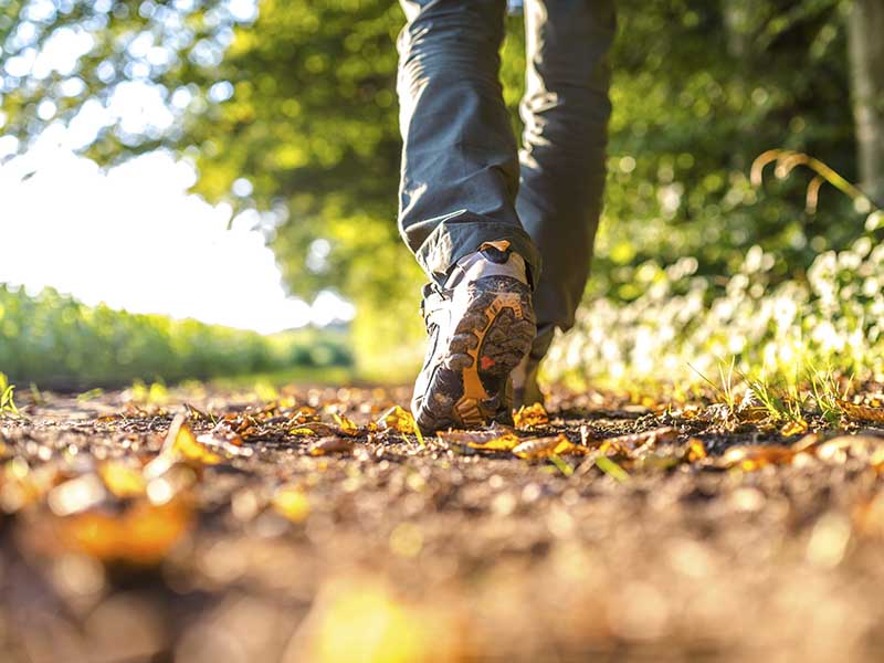 پیاده روی را چگونه برای خودمان شیرین و جذاب کنیم؟