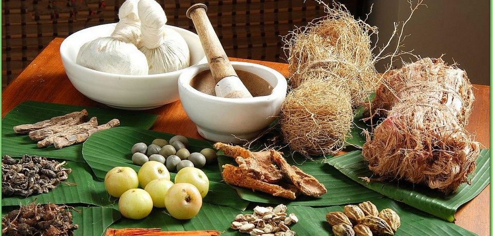 گیاهان و ترکیبات گیاهی ضد دیابت