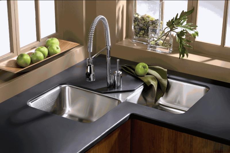 باکتریها و قارچهای بیماریزا موجود در آشپزخانه ها