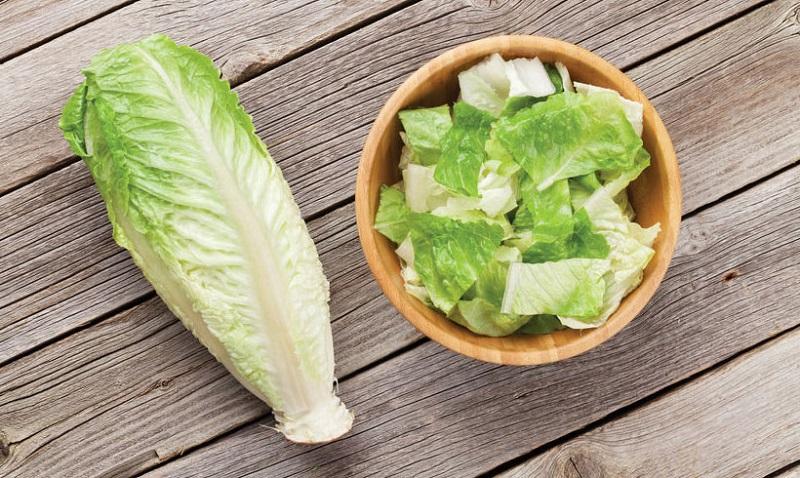 بهترین سبزی تمیز کننده خون