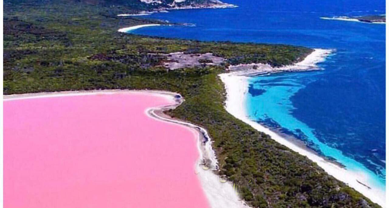 دریاچه شگفت انگیز به رنگ صورتی! + عکس