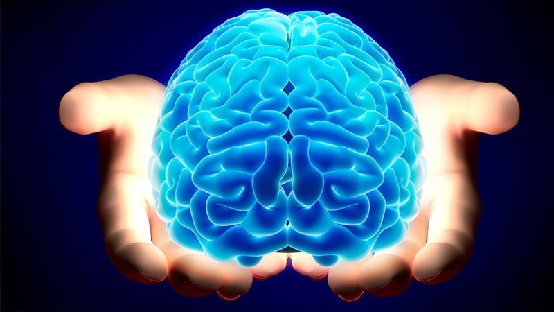 شما از نیمکره راست مغز استفاده میکنید یا از نیمکره  چپ