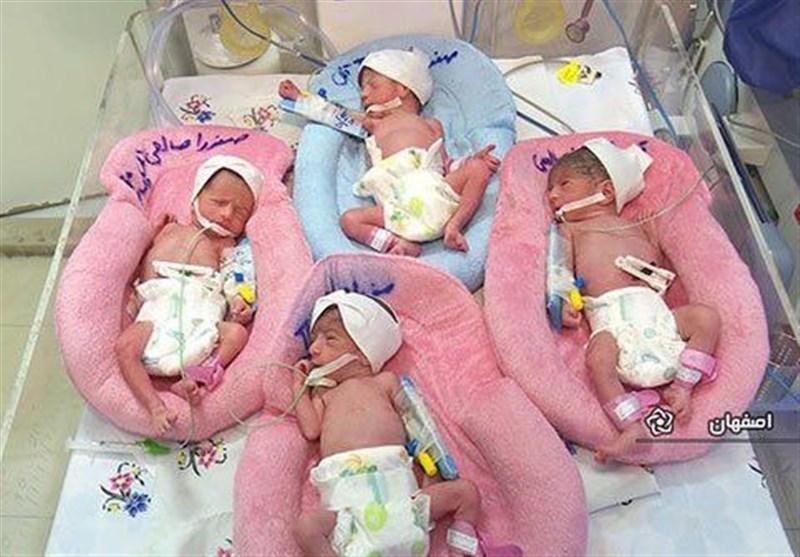 تولد ۴ قلوها در بیمارستان امام (ره) اهواز + عکس